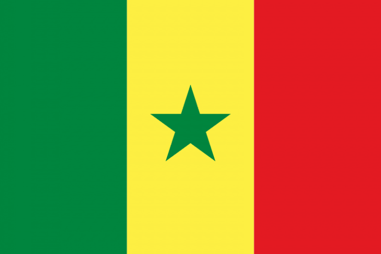 intérprete, traductor, Senegal, España